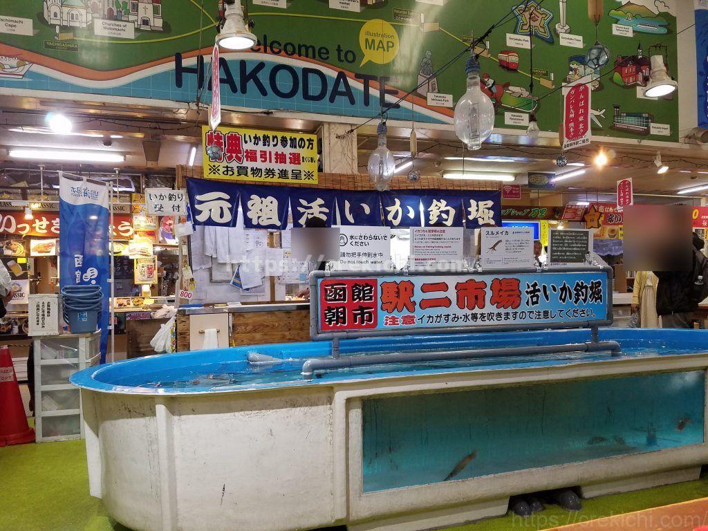函館イカ釣り体験